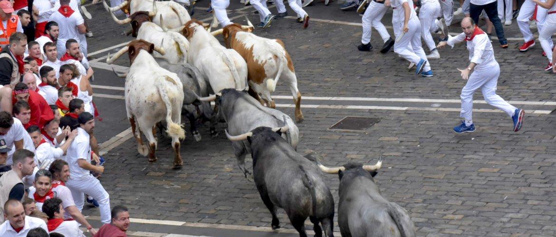 Mozos a los lados observan el paso de la manada en el encierro de este 9 de julio. Foto del Ayuntamiento de Pamplona.