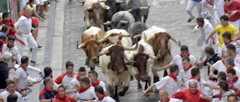 La manada, en un momento del encierro de este 9 de julio. Foto del Ayuntamiento de Pamplona.